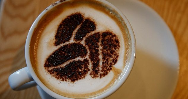 Coffee consumption emerges as beneficial for public health
